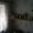 Сдам 1-комн. квартиру в Северн. мк-не #1320491