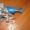 Кронштейн топливного фильтра Евро 3 PL420 #1457038