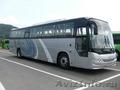 Продаём автобусы Дэу Daewoo  Хундай  Hyundai  Киа  Kia  в наличии Омске. Хабаров