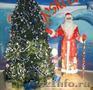 Дед Мороз и Снегурочка, детям и взрослым   - Изображение #2, Объявление #1149326